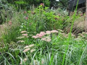 beplantingsplan Bussum