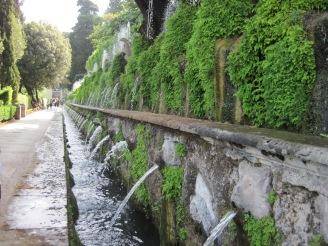 vijver water in de tuin tuinontwerp