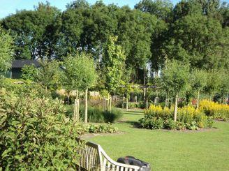 landschapsontwerp tuinontwerp Almere
