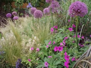 beplantingsplan tuinontwerp Bussum Naarden Blaricum Huizen