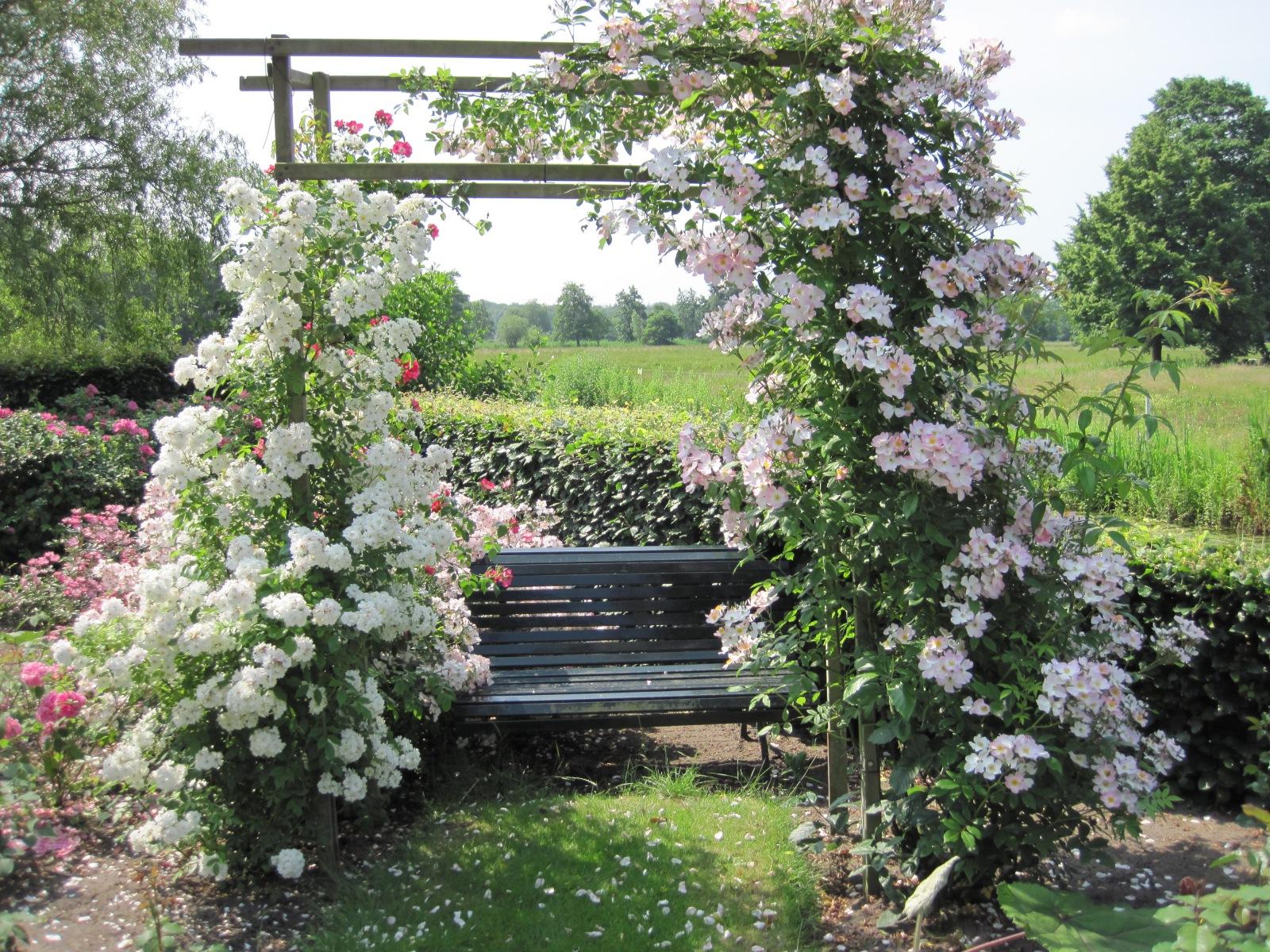 romantische tuin tuinontwerp Gooi