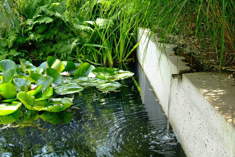 tuinarchitectuur hovenier