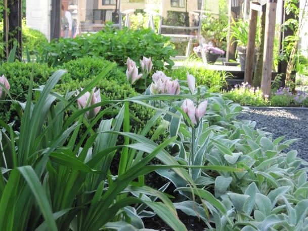 beplantingsplan Almere tuinontwerp