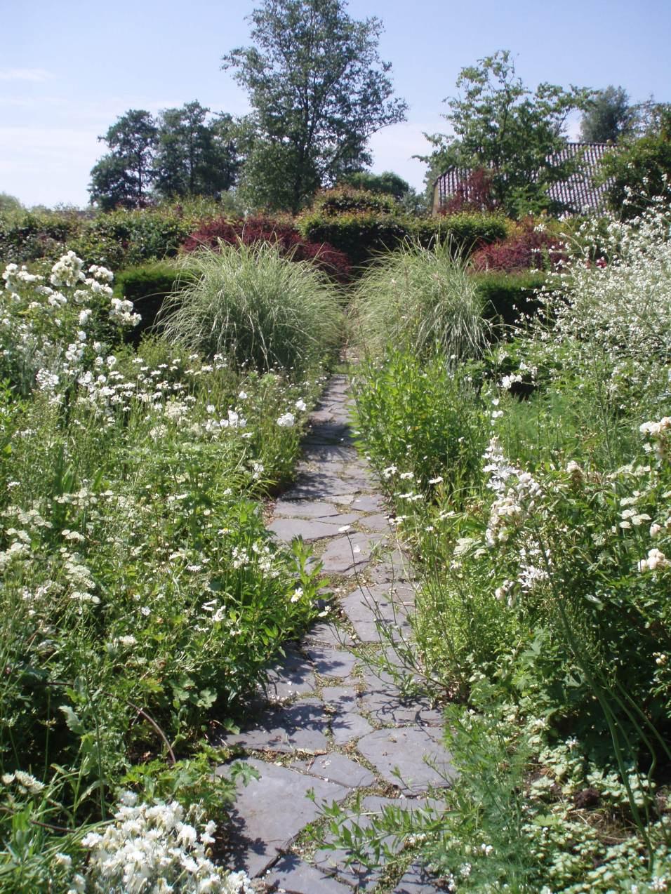 tuinontwerp Gooi kleine tuin