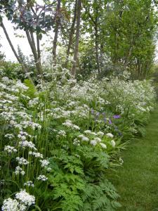 beplantingsplan tuinplan Gooi