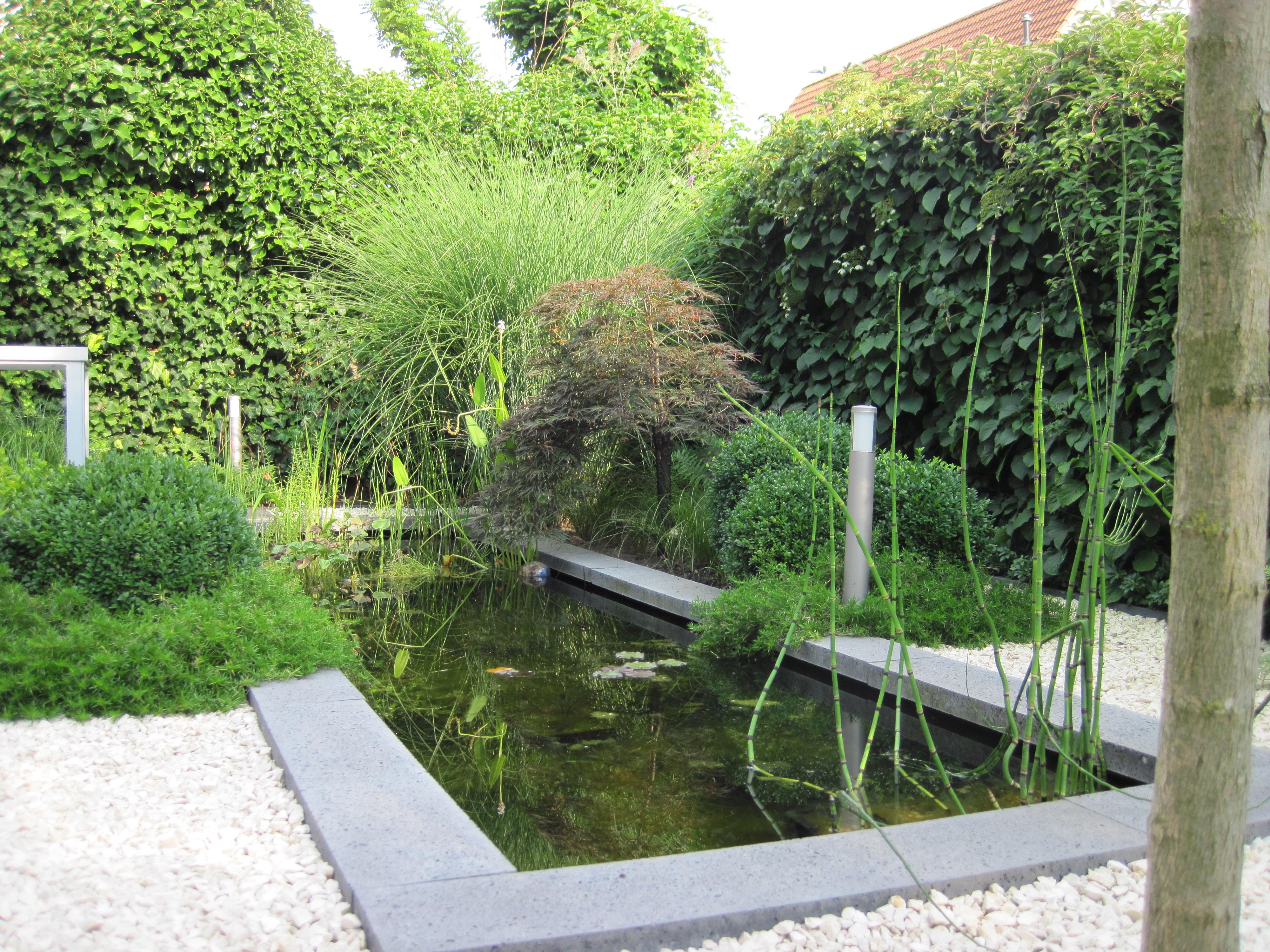 Strakke tuin met vijver joosbuiten for Tuin en vijver